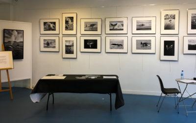 Mon exposition avec les Photophiles de Villennes